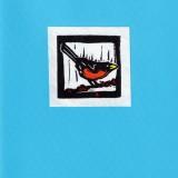 Robin Card - Blue